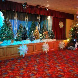 woodford-halse-social-club-stage